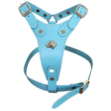 Load image into Gallery viewer, Staffordshire Bull Terrier Harnesses