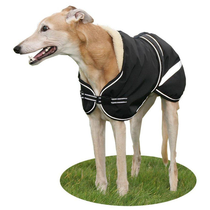 greyound starbright dog coat. best quality coat for greyhounds and lurchers. black with reflective