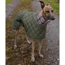 Load image into Gallery viewer, greyhound in olive padded jacket with high fleece collar snood