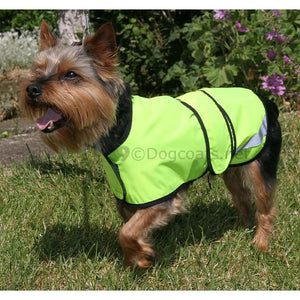 yorkshire terrier dog coat with reflective hivis high visability coat | DryDogs