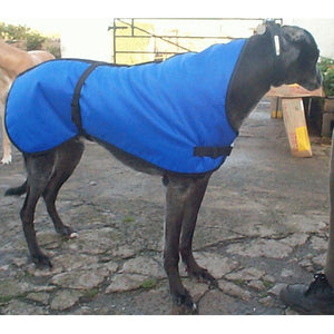 Royal blue lurcher coat. Waterproof, warm, perfect greyhound winter wear
