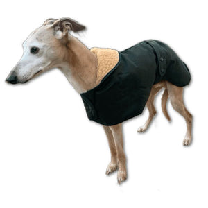 winter whippet wear for the trendy whippet or greyhound in your life