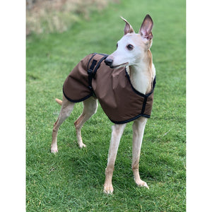 barbor wax whippet jacket dog coats uk