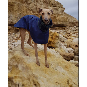 Our best selling waterproof whippet coat with harness hole option.