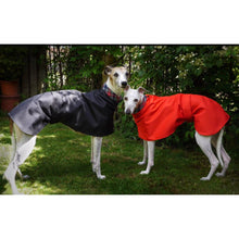Load image into Gallery viewer, Whippet coat for summer. Lightweight greyhound coat. Cotton lined. The trendy whippet.