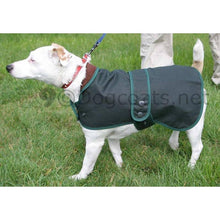 Load image into Gallery viewer, jack russell coats - hunter waxed jacket - green barbour dog coat