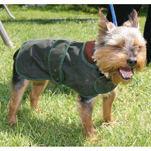 Load image into Gallery viewer, yorkshire terrier dog coat - hunter wax green wax jacket - barbour wax dog coat