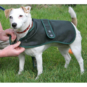 jack russell dog coats - wax hunter green by cosipet uk - barbour