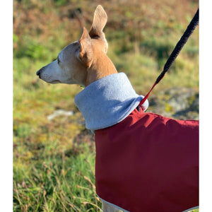 greyhound and whippet coats with snood hook. Perfect for winter. with hole in neck for lead