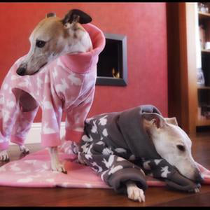pet blanket. fleece sighthound onesies sold separately.