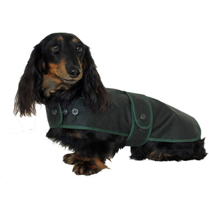 coats for dachshunds in green wax