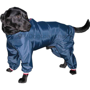 labrador wearing a nylon trouser suit for dogs