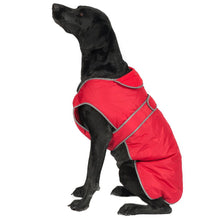 Load image into Gallery viewer, STORM GUARD Dog Coat with Harness Hole