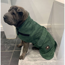 Load image into Gallery viewer, dog towel coat shar pei- green pet towelling