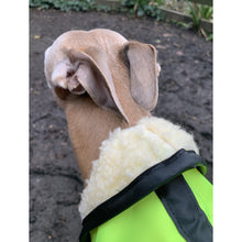 Load image into Gallery viewer, whippet raincoat with hood - high visibility and reflective