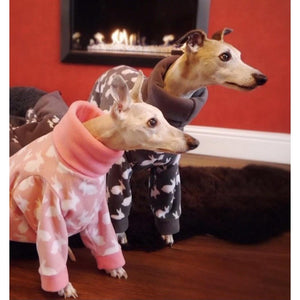 The Trendy Whippet