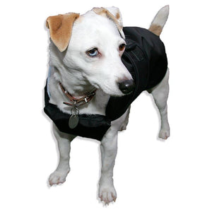 dog coat with chest protection. black on mika the jack russell also suitable for border terriers and yordshire terriers
