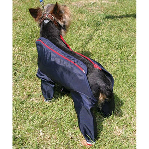 complete coverage dog coat small