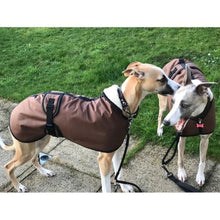 Load image into Gallery viewer, George and Mollie wearing their new sandstone waxed whippet coats