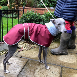 Greyhound & Whippet Polar Waterproof Coat with Snood Collar