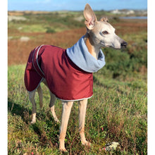 Load image into Gallery viewer, greyhound winter coat