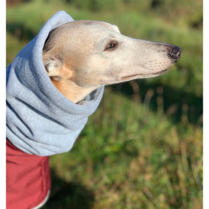 whippet winter coat with polar fleece snood. cosipet, thetrendywhippet