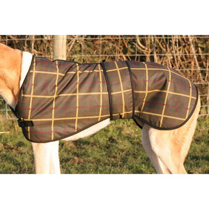 greyhound coats uk - tartan wax greyhound dog coats