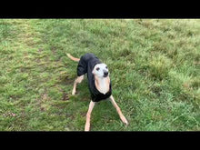 Load and play video in Gallery viewer, Lightweight/Summer Whippet Coats