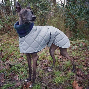 Iggy coat with harness hole, snood collar, design your own bespoke Italian greyhound coat