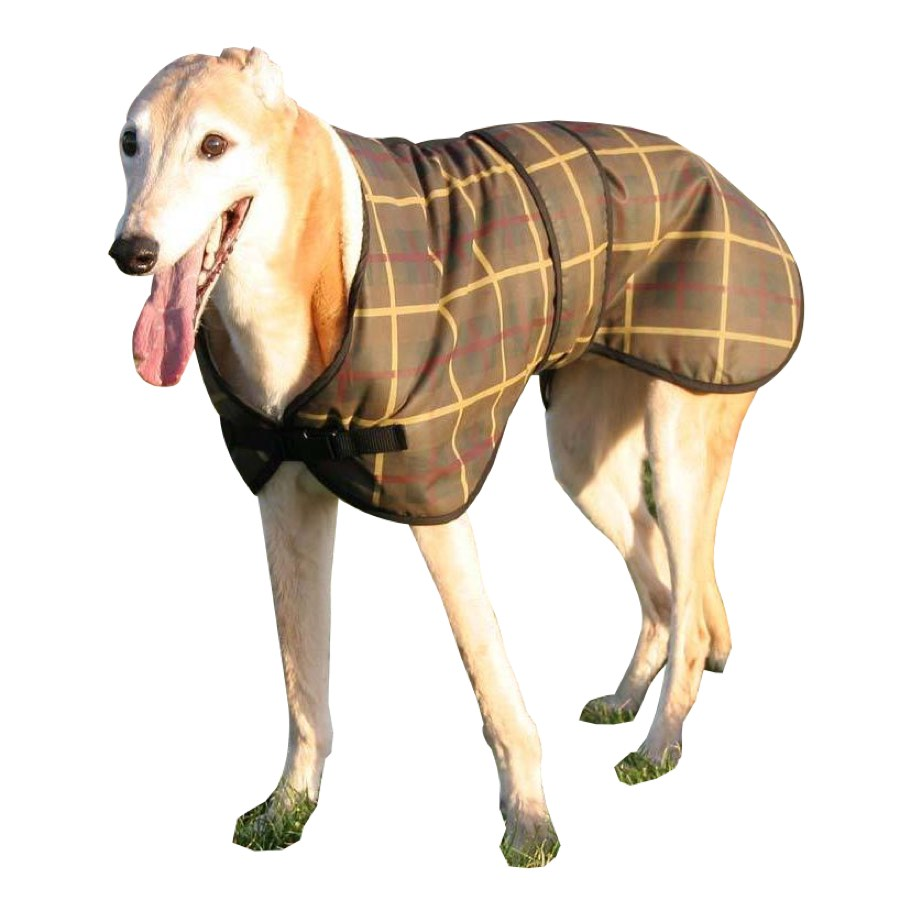 Waxed dgreyhound coat showing the adjustable front clip