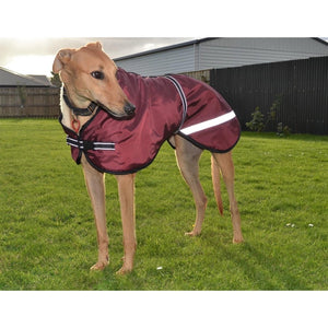 sighthound coat. maroon, burgundy with reflective strips. lurcher coats