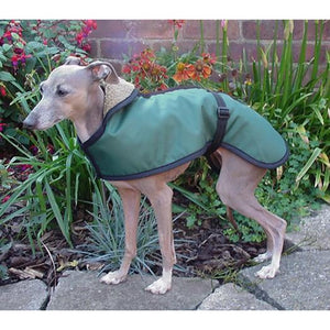 Lightweight, summer coat for italian greyhounds. Shower/Water proof fabric shell with cool thin mesh lining