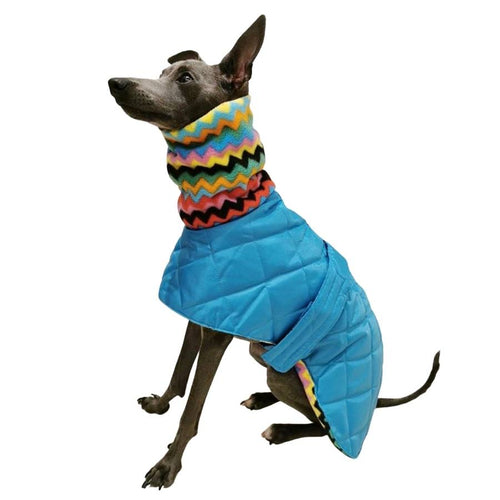 Italian greyhound coat, made to measure dog coat with harness hole