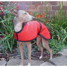 Load image into Gallery viewer, Red, lightweight summer trendy iggy coat