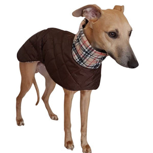 italian greyhound coat - quilted, fleece lined - snood collar, extra warm, harness hole option