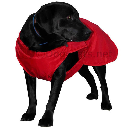 Labrador dog coat with underbelly section red | DryDogs