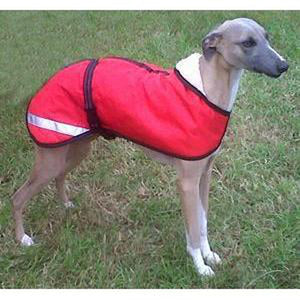 red whippet coat with reflective strips thank to one of our customers for sending in the picture