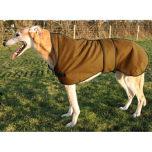 Load image into Gallery viewer, walking out raincoat for greyhound. Fawn greyhound wearing a greyhound coat