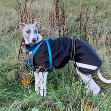 Load image into Gallery viewer, Whippet Rain Coat with Reflective Option
