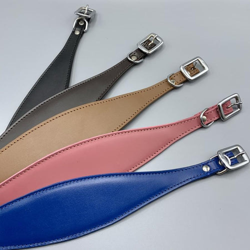 Trendy whippet collars