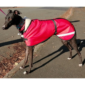 waterproof dog coat in red. greyhound jacket for all weathers. fleece lined and wind proof