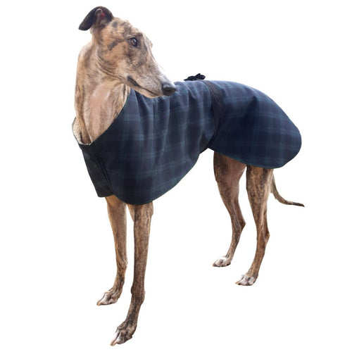 indoor greyhound house coat. also good as a sighthound kennel coat