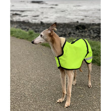 Load image into Gallery viewer, lightweight whippet coats. hi-vis yellow with reflective and thin mesh lining