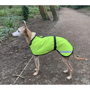 waterproof whippet coat with high vis waterproof shell and fleece or mesh lining