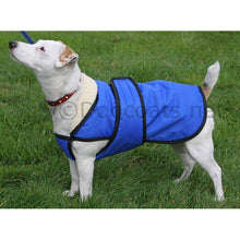 Load image into Gallery viewer, dog coat with chest protector uk made by drydogs.co.uk