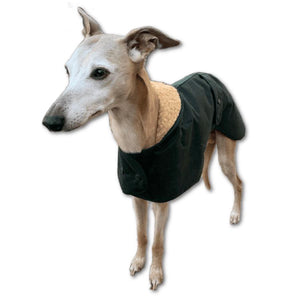 greyhound and whippet wax barbour waterproof coats in green