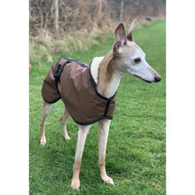 Load image into Gallery viewer, whippet dog jacket uk made fawn whippet in field with ears up