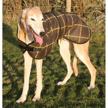 Load image into Gallery viewer, DryDogs.co.uk exclusive product - tartan waxed greyhound coat uk