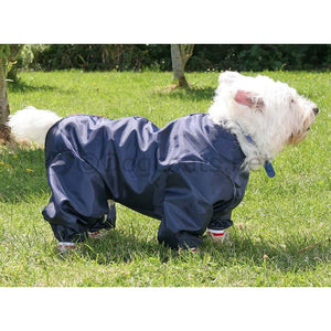 small westie dog wearing dog coat with legs navy blue
