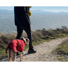 Load image into Gallery viewer, wind proof and water proof whippet coats uk